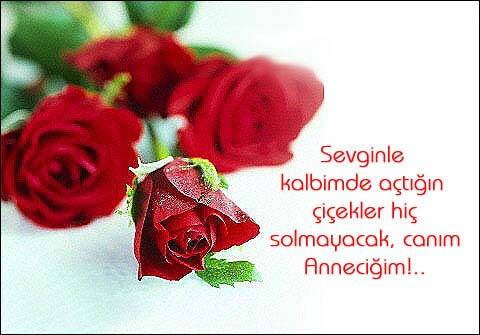 canim_annem