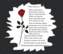 www.manzara.be_-_Cok_sevdim